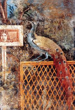 Affresco da Pompei, oggi al Museo Archeologico di Napoli